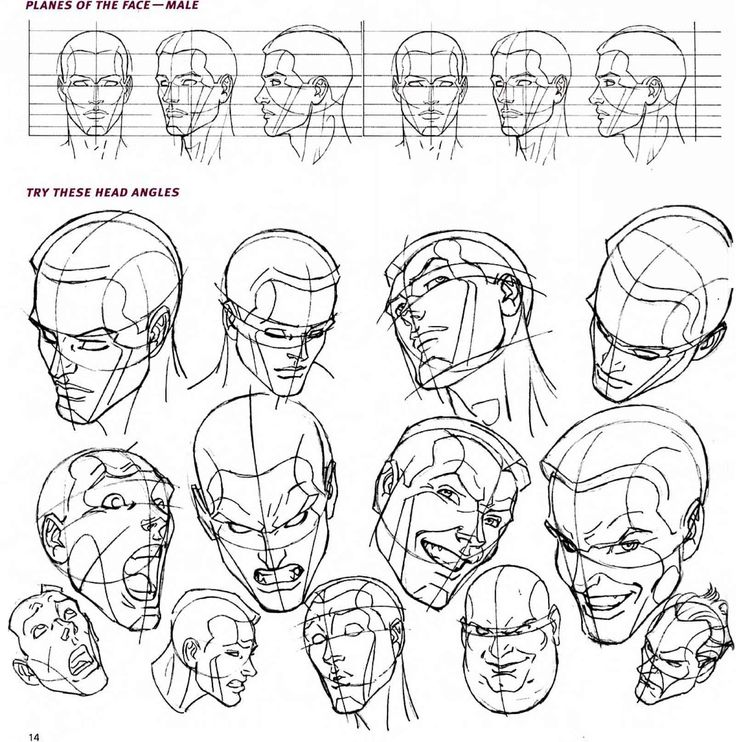 Male head perspectives. (http://www.jayespace.com/comics/images/1789_1_7-face-drawing-planes.jpg)