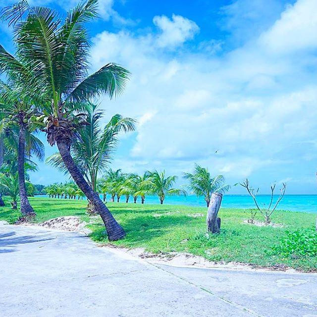 【aaaar13n】さんのInstagramをピンしています。 《* * グアム2日目🍍は、 朝からココス島に行ってひたすら 海で6時間遊びっぱなし🏖笑 小さい島だけど海綺麗過ぎたww 青過ぎ。天気良過ぎ。楽し過ぎ。 私はthank youしか言わなかった てか、、他の英語何も言えなかった。 朝4時。帰国します🗽🇯🇵 * * #グアム #旅行 #海 #常夏 #海外 #一眼 #カメラ #景色 #ココス島 #guam #travel #ocean》