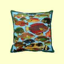 colorful fish on turquiose background pillows by seaskys