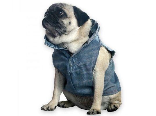 Hip Biker Chic Doggie Vest by Justina Blakeney: Made of recycled denim.