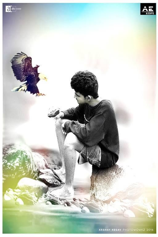 Achyuth ae _Eagle sitting on Hand, sitting with wings open, eagle sitting on Arm.