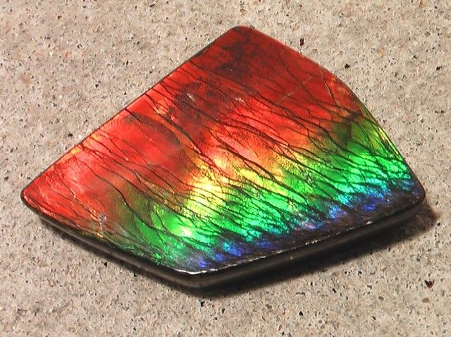 Ammolite - absolutely beautiful piece!