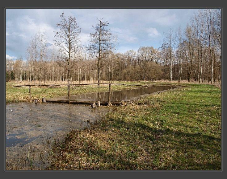 Nosislavský les