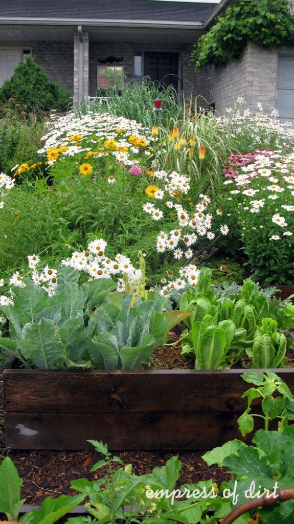 Good Garden Ideas 324 best garden│landscape ideas & tips images on pinterest