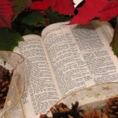 Bible verses/passages for each day of December: Christmas Scripture Tradition {printable}