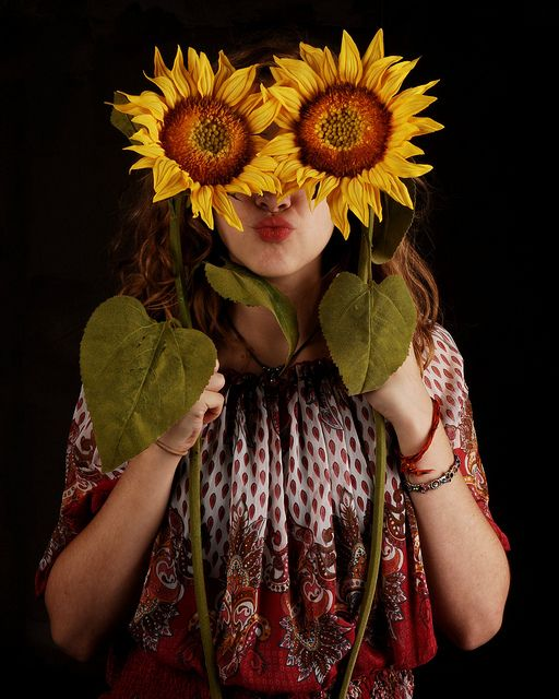 Best sunflowers and daisies images on pinterest