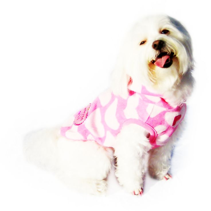 Free Sewing Patterns For Dog Sweaters: Knitting pattern dog sweater ...