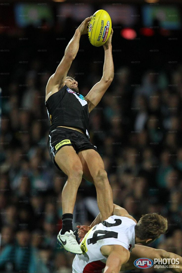Chad Wingard 7-6-14, may as well just hand him mark of the year now