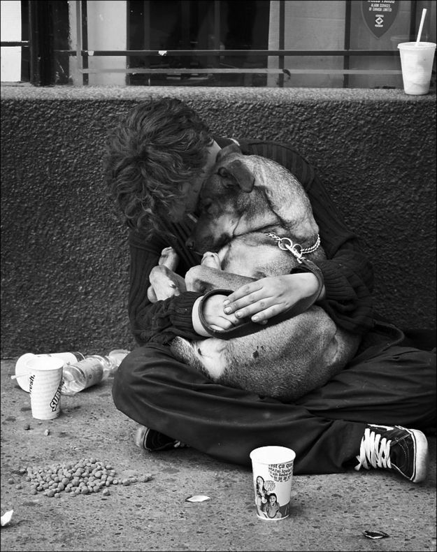 The Dogs Of Homeless People: My Dog Always Eats First