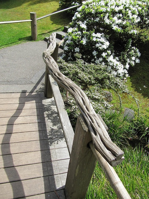 16 Best Images About Garden Railings On Pinterest Rustic