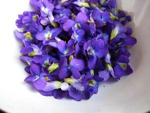 http://verysmallanna.com/2009/05/tastes-like-purple/