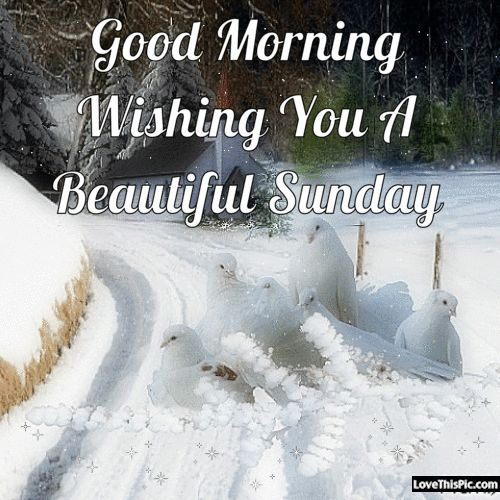 Good Morning Sunday Winter : Best images about sunday blessing on pinterest