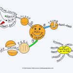 How to Peel An Orange Mind Map