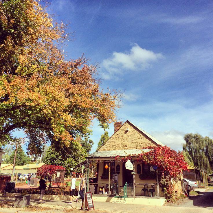 The beauty of Autumn (Hahndorf - Adelaide, South Australia)