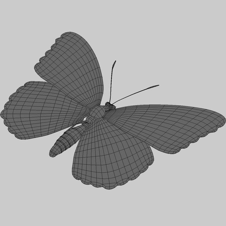maya photorealistic monarch butterfly