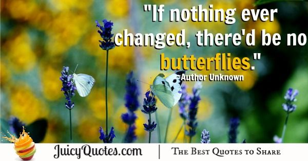 Quote About Change - Author Unknown