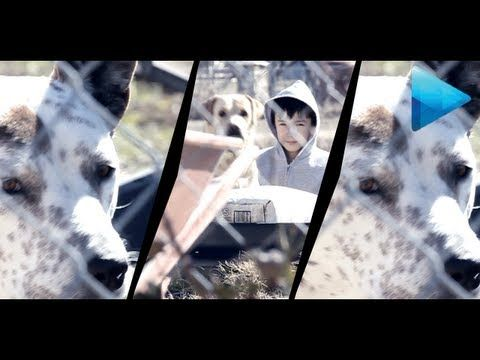 Music Video Flicker Effect - Sony Vegas - YouTube