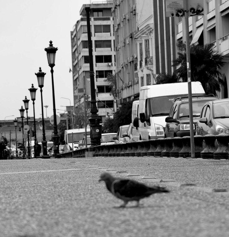 Η άλλη πλευρά της Θεσσαλονίκης.