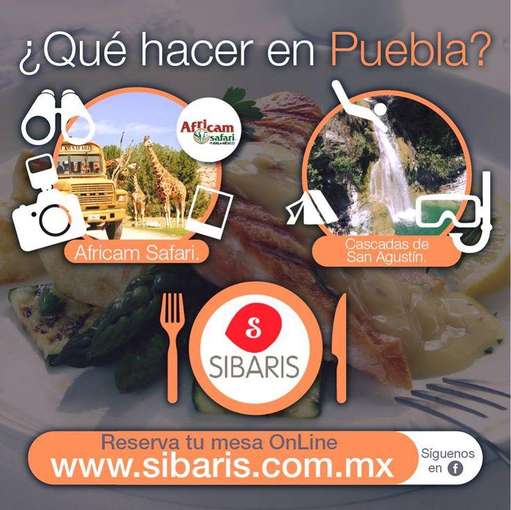 #Sibaris #Puebla