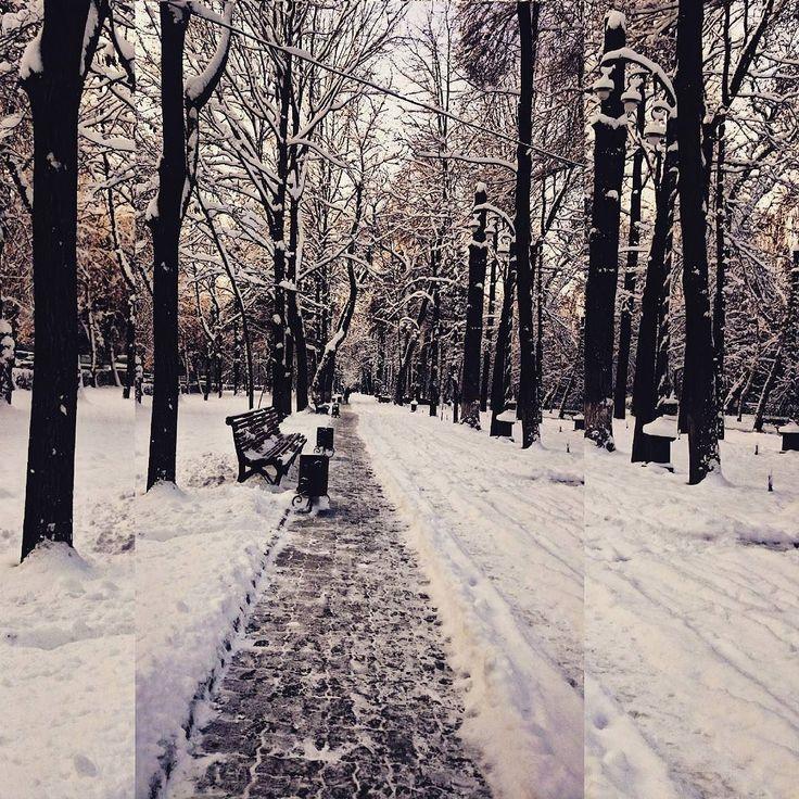 """From the Instagram of kenkamiro: """"Все тот же бульвар по которому каждый день и утром и в обед и вечером... Времена года сменяют друг друга люди меняются а это все тот же бульвар...пройдут года и пройдусь по нему снова но будет ли это та же я..?"""""""