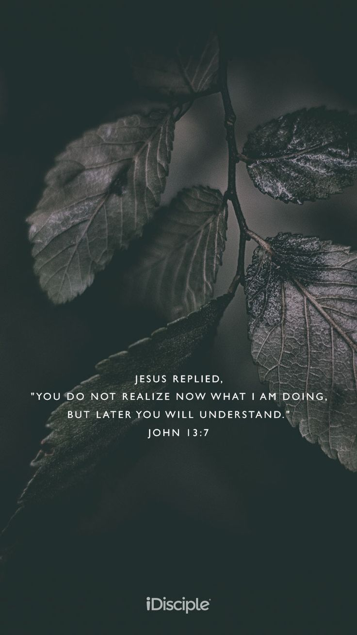 "Jesus replied, ""You do not realize now what I am doing, but later you will understand."" 