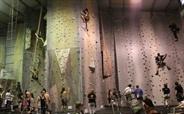 Hangdog Climbing Gym--we must try this!  #welovethegong  Wollongong, NSW, Australia