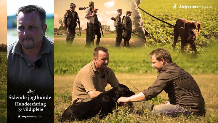 Filmen fra Jægernes Magasin forsøger at give et bilede af de stående jagthunde, som familie- og jagthund, samt skildre de passionerede hundeejere.