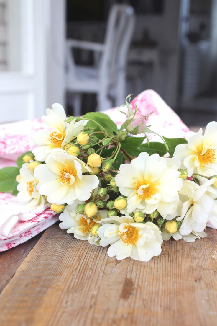 Roses ettrottmonogram.blogspot.se