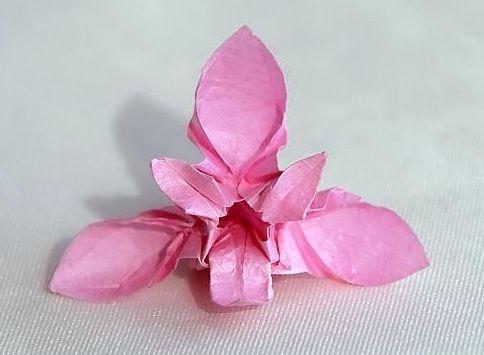 Beautiful Origami Orchid - http://www.ikuzoorigami.com/beautiful-origami-orchid/