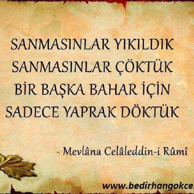 ~ Mevlana ~ Rumi ~