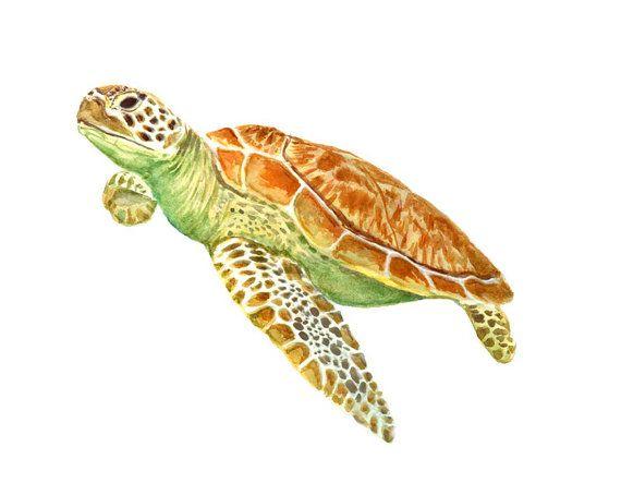 Tortuga 8 x 10 giclee print. Acuarela, pintura tortuga tropical, verde, animal del mar, playa casa arte, Acuarela original