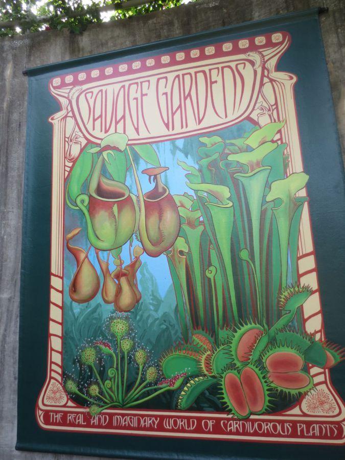 Savage Gardens exhibit poster carnivorous plants San Antonio Botanical Garden Texas