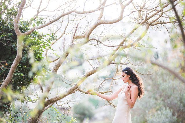 Credit: My Wedding Tale Photography - boom (plant), natuur, hout, mooi, buitenshuis, blad, park, zomer, landschap