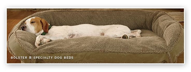 Extra Large Dog Bed Clearance | Dog beds for large dogs