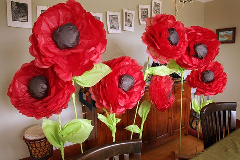 Giant tissue paper poppies I helped my mom make for Wizard of Oz!