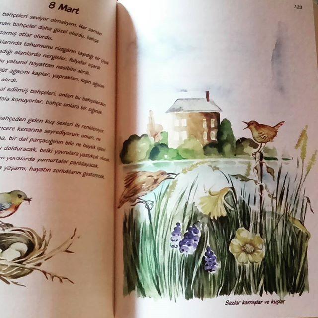 Göl yaşamın kaynağı #birressamınbahçegüncesi #işkültüryayinlari #dıary #naturediary #garden #gardener #kitaplarım #artdrawing