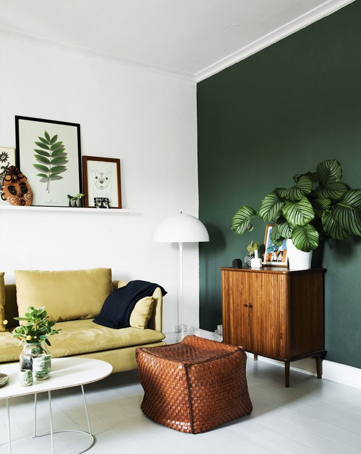 Green Accent Wall 493 best wall color images on pinterest | wall colors, colors and live