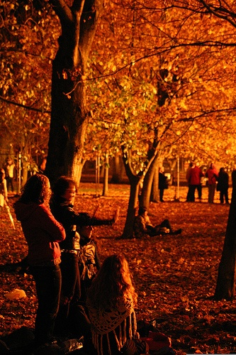 Lewes Bonfire Night 2007 - Bonfire Onlookers and Trees