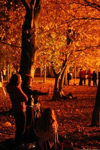 Lewes Bonfire Night 2007 - Bonfire Onlookers and Trees