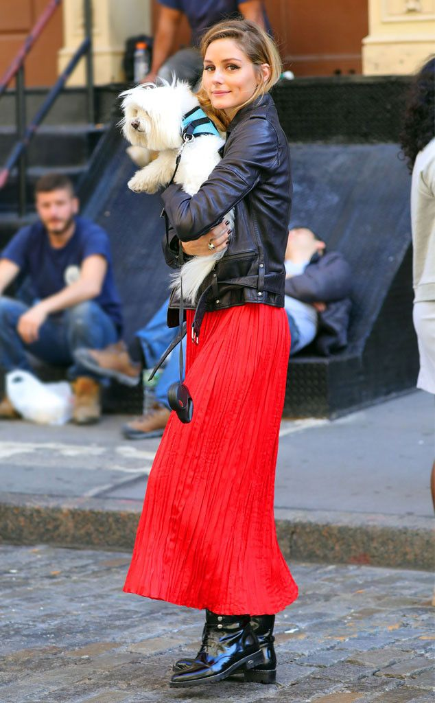 Olivia Palermo from The Big Picture: Today's Hot Pics  The cutest! The fashion icon is seen on a walk with her dog, Mr. Butler, in NYC.
