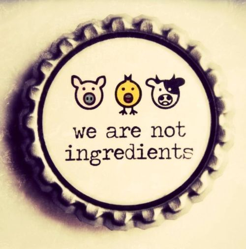 vegetarian and vegan quotes and sayings