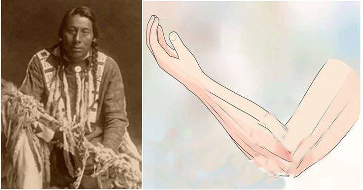 12-noveny-amivel-az-indianok-minden-betegseget-gyogyitottak-az-izuleti-problemaktol-a-rakig