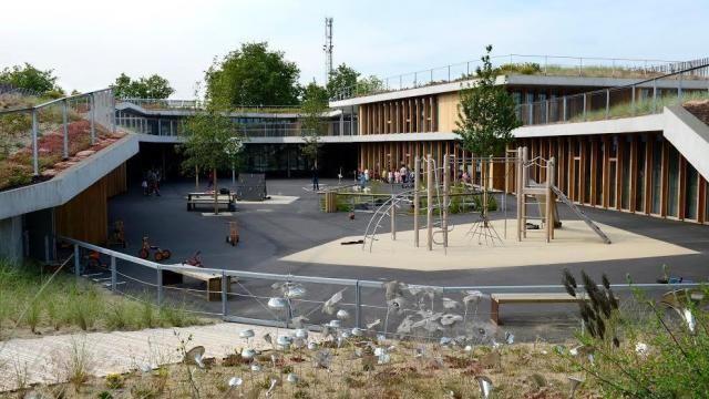 Une partie de la toiture végétalisée avec ses landes et ses dunes, à l'école  Aimé-Césaire, à Nantes.