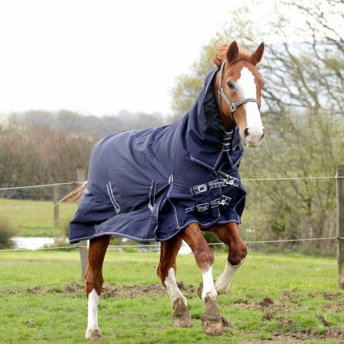 The Rhinegold Full Neck Arizona 100g Turnout Rug Has A 600 Denier Ripstop Waterproof Breathable Outer