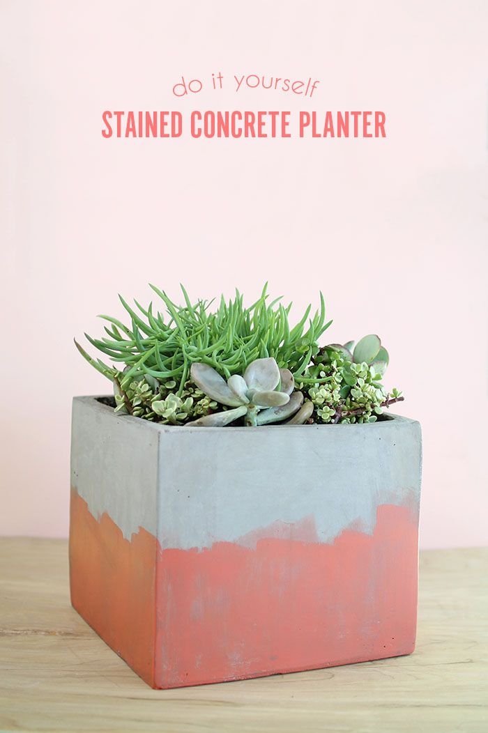 DIY Stained Concrete Planter - add color to concrete without having to seal!