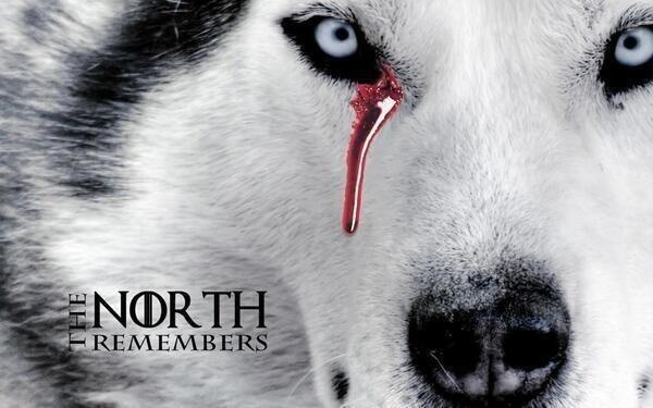 The North Remembers | Game of Thrones | Pinterest | Game ...