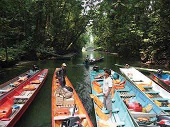 Mulu National Park -Maleisië - Rondreis West Maleisië + Borneo