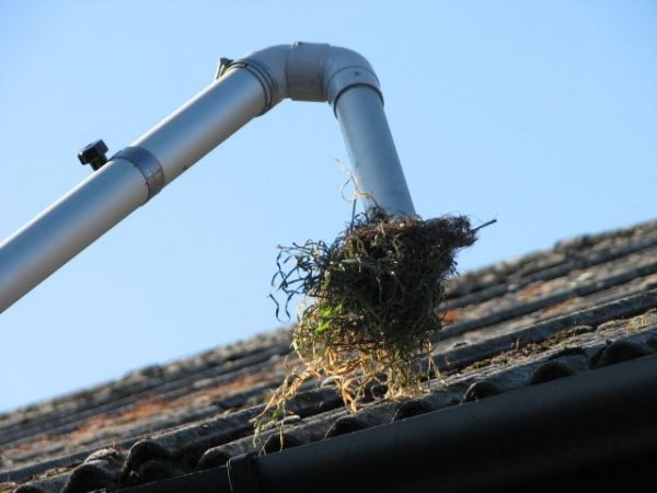 Roof Vacuuming Services Amp Velocity Roof Vacuum Services