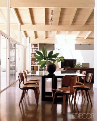 Ceiling, walnut chairs, very airy...