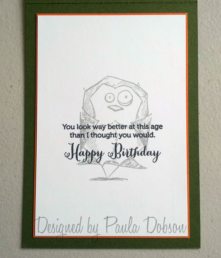Bird Crazy, Copics, Male, Birthday, Card Inner, Paula Dobson